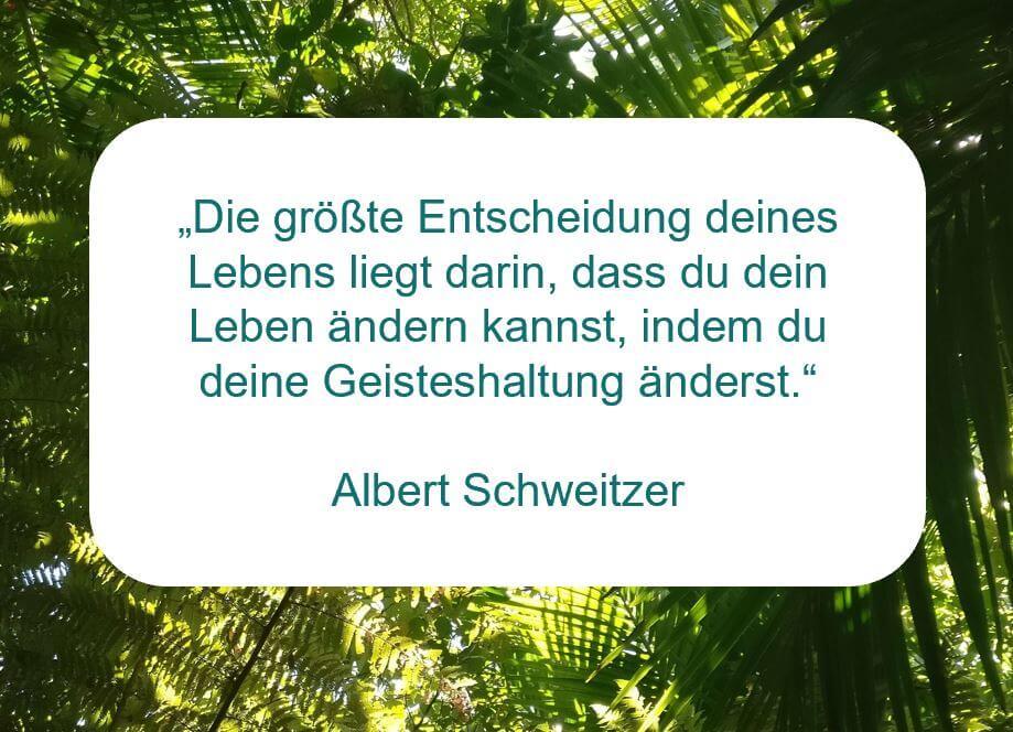 Zitat der Woche von Albert Schweitzer auf www.achtsam-engagiert.de
