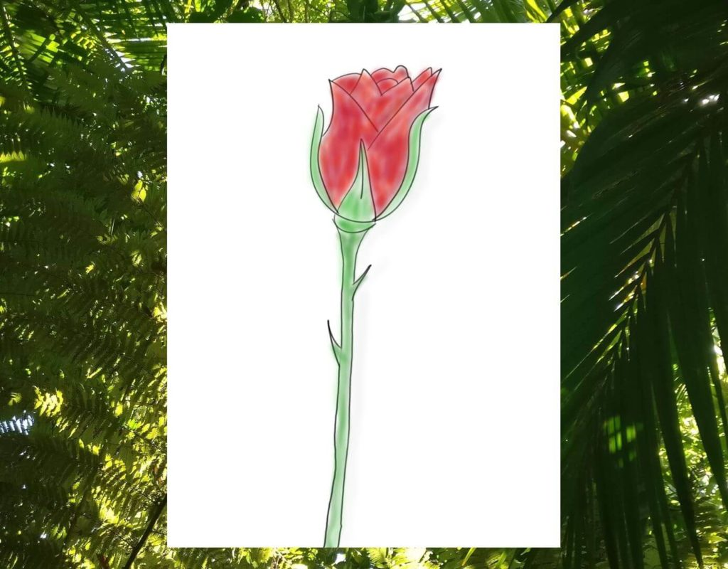 Das Bild zeigt eine visualisierte Rose und steht für die Rosen-Dorn-Knospen-Methode zum Reflektieren von Vorhaben und Zielen.