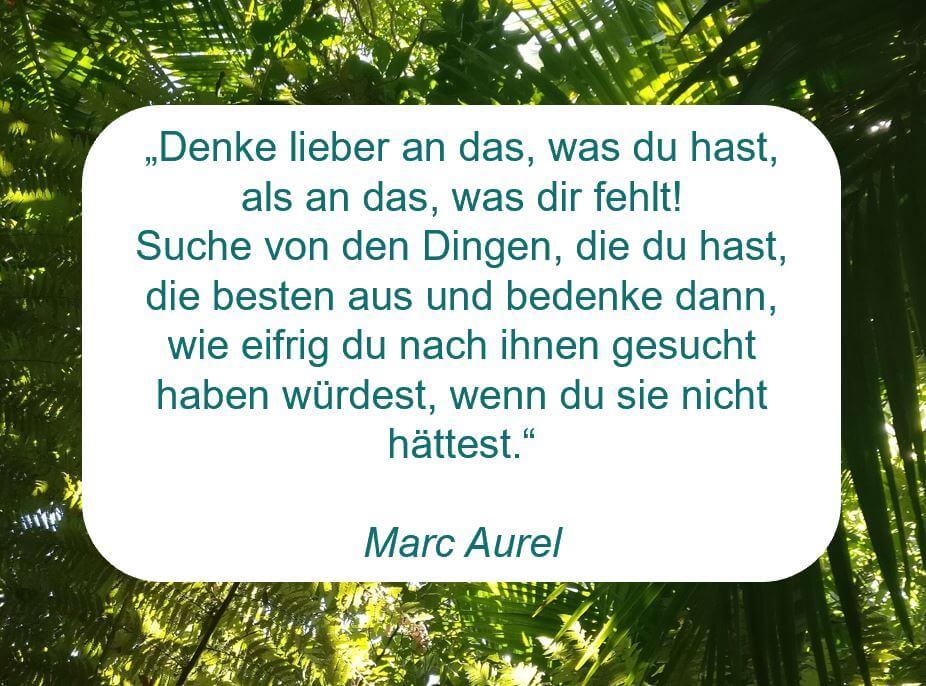 """Zitat der Woche auf www.achtsam-engagiert.de von Marc Aurel """"Denke lieber an das, was du hast, als an das, was dir fehlt! Suche von den Dingen, die du hast, die besten aus und bedenke dann, wie eifrig du nach ihnen gesucht haben würdest, wenn du sie nicht hättest."""""""
