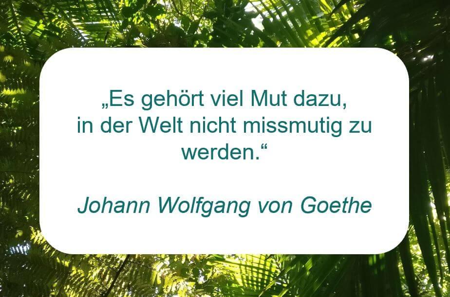 """Zitat von Johann Wolfgang von Goethe auf www.achtsam-engagiert.de """"Es gehört viel Mut dazu, in der Welt nicht missmutig zu werden."""""""