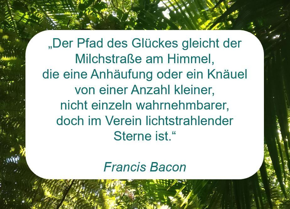 """Zitat der Woche auf www.achtsa-engagiert.de von Francis Bacon: """"Der Pfad des Glückes gleicht der Milchstraße am Himmel, die eine Anhäufung oder ein Knäuel von einer Anzahl kleiner, nicht einzeln wahrnehmbarer, doch im Verein lichtstrahlender Sterne ist."""""""