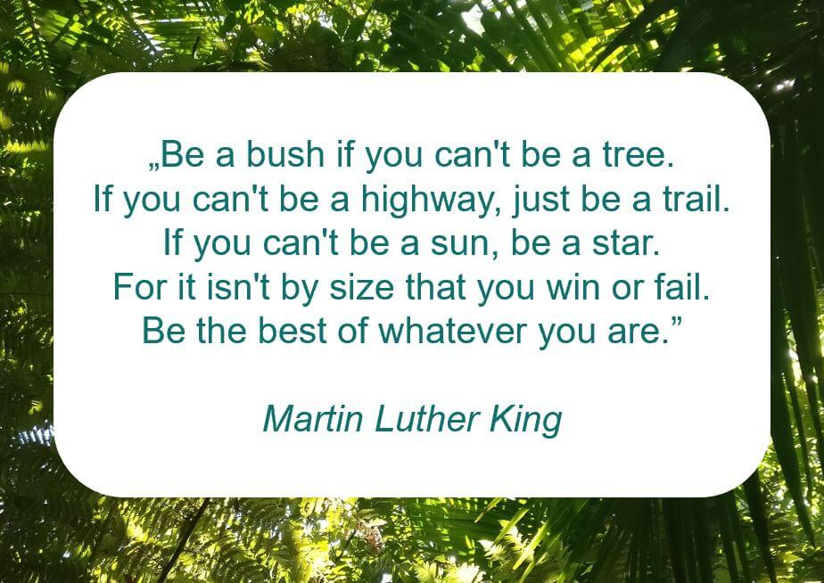 "Zitat der Woche auf www.achtsam-engagiert.de von Martin Luther King: ""Be a bush if you can't be a tree. If you can't be a highway, just be a trail. If you can't be a sun, be a star. For it isn't by size that you win or fail. Be the best of whatever you are."""