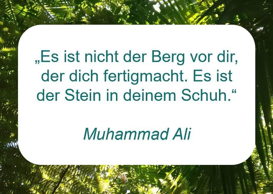 """Zitat der Woche auf www.achtsam-engagiert.de von Muhammad Ali: """"Es ist nicht der Berg vor dir, der dich fertigmacht. Es ist der Stein in deinem Schuh."""""""
