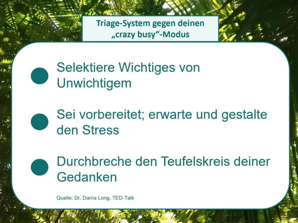 Die drei Grundsätze von Dr. Darria Long für die Nutzung des Triage-Systems gegen Stress. Visualisiert von www.achtsam-engagiert.de