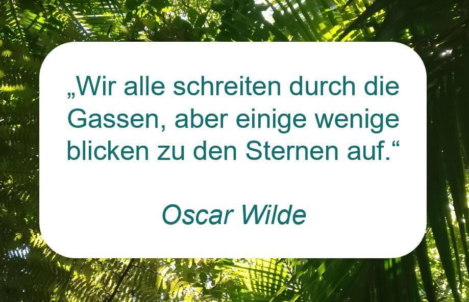 """Zitat der Woche auf www.achtsam-engagiert.de von Oscar Wilde: """"Wir alle schreiten durch die Gassen, aber einige wenige blicken zu den Sternen auf."""""""