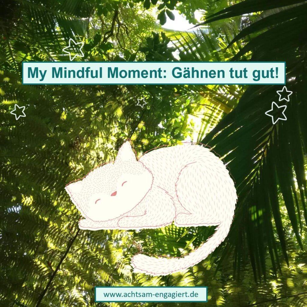 My Mindful Moment auf www.achtsam-engagiert.de: Gähnen tut gut, denn es entspannt uns nachweislich.