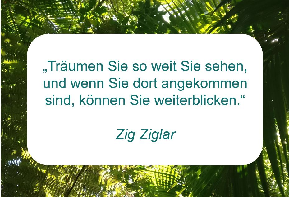 """Zitat der Woche auf www.achtsam-engagiert.de """"Träumen Sie so weit Sie sehen, und wenn Sie dort angekommen sind, können Sie weiterblicken."""" (Zig Ziglar)"""