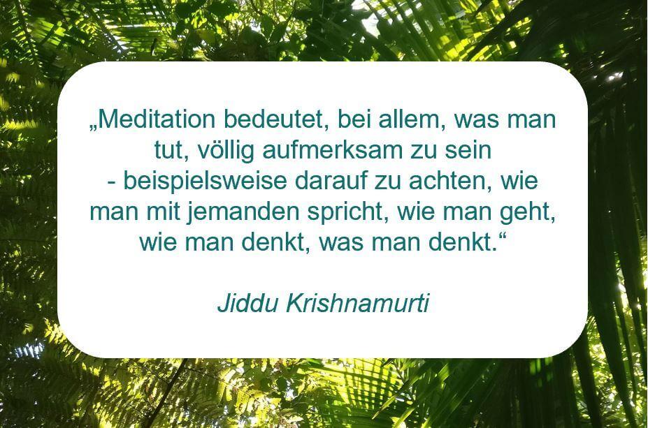 """Zitat der Woche auf www.achtsam-engagiert.de: """"Meditation bedeutet, bei allem, was man tut, völlig aufmerksam zu sein - beispielsweise darauf zu achten, wie man mit jemanden spricht, wie man geht, wie man denkt, was man denkt."""" (Jiddu Krishnamurti)"""