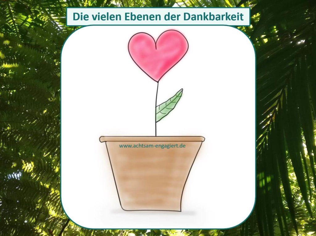 Das Bild zeigt eine herzförmige Blume, die für Dankbarkeit steht. Wie du in das Gefühl der Dankbarkeit eintauchen kannst, erfährst du in diesem Artikel mit einer Dankbarkeitsliste. Visualisiert von www.achtsam-engagiert.de